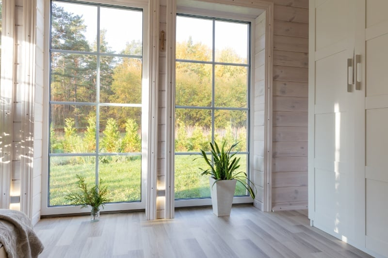 Windows and Doors Cleaning